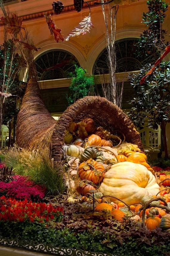 Fall Into Autumn At Bellagio S Conservatory Amp Botanical