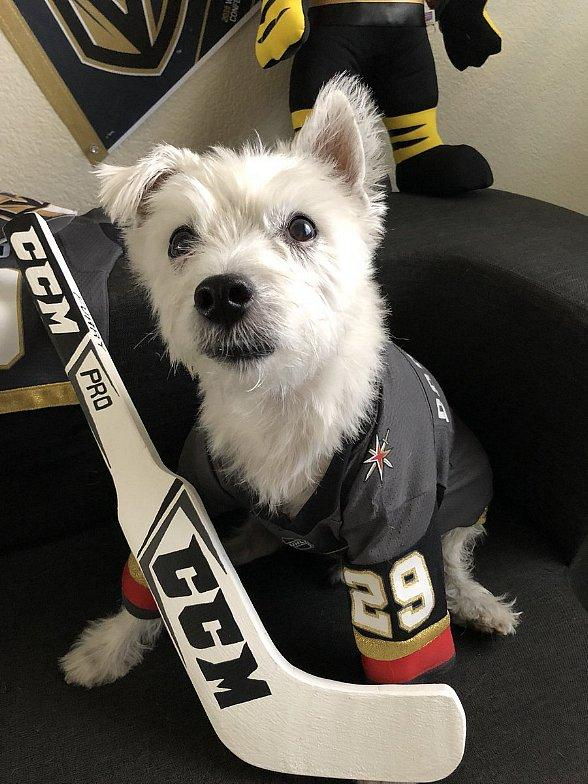 Las Vegas Harley-Davidson Hosts First Ever Puck Party Featuring Bark-Andre' Furry