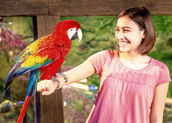Girl with exotic bird at SeaQuest Interactive Aquarium