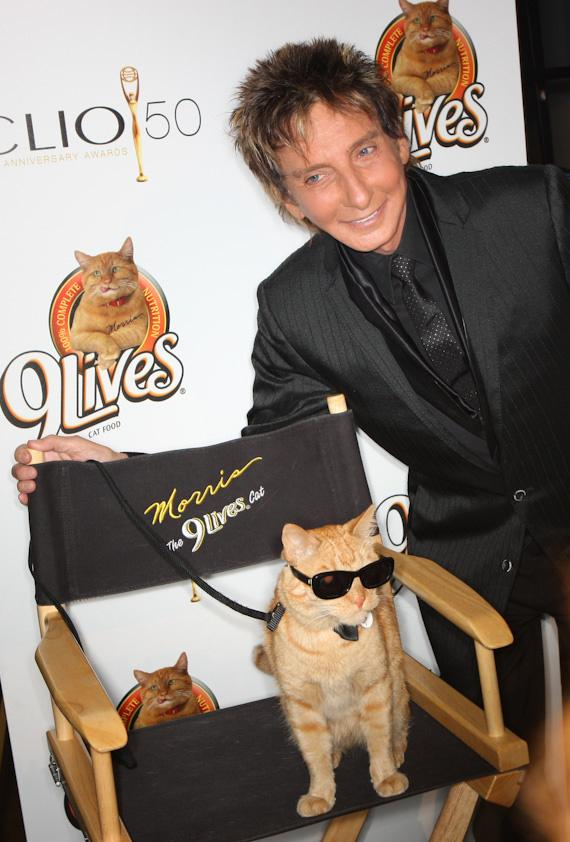 Barry Manilow and Morris the Cat at CLIO Awards