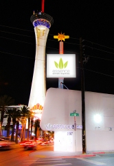 Essence Vegas to Have the Only Recreational Cannabis Dispensary on Famed Las Vegas Strip