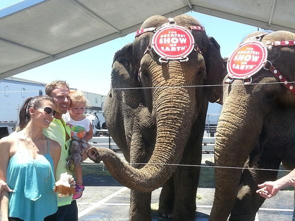 Ian Ziering and Family Spend Father's Day at Ringling Bros. & Barnum and Bailey Circus