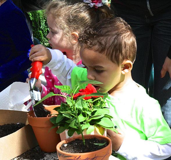 Plant World Nursery To Host Free Kid S Flower Potting Sessions