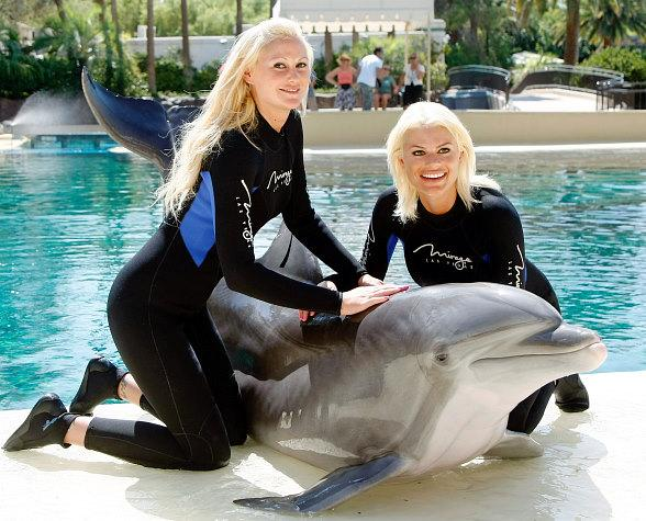 megan hauserman at siegfried roys secret garden and dolphin habitat at the mirage - Siegfried And Roy Secret Garden