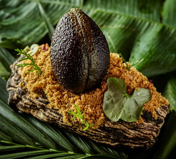 SUSHISAMBA Celebrates Earth Week April 22-30; Launches Unforgettable Rainforest-Inspired Culinary Campaign Benefitting Cool Earth