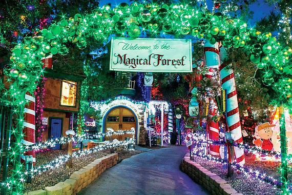 The Magical Forest at Opportunity Village